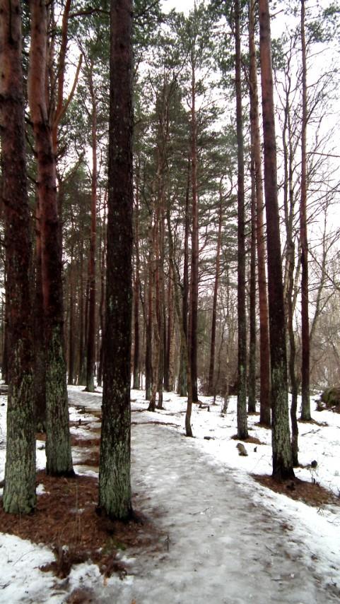 Park na ostrove Styrsö